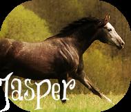 Джаспер