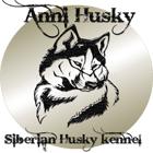 Anni Husky