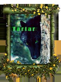 Тартар