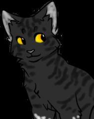 Коты воители-форум