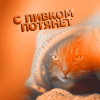 Камышовый
