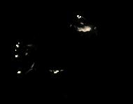бараболь