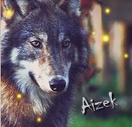 Aizek