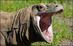 Hellraptor