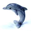 SilverDolphin