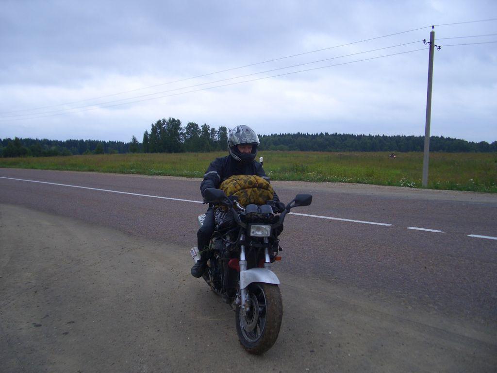 Петрович 2