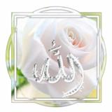umm_Abdulloh