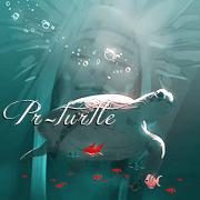 PR-turtle