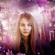 Darcy Haynes