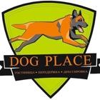 Dog place ( Юльчий)
