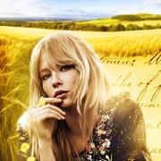 Elyse Archer