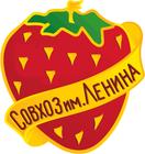 sovlenina.ru