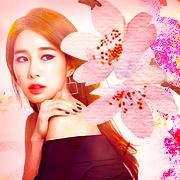 Kim Sun