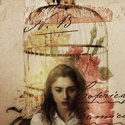 Lila Meadowes