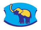 SafariMarket
