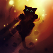 Черный кот