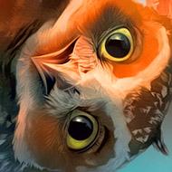 Pr-Owl