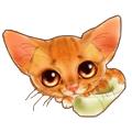 http://forum.mybb.ru/img/avatars/0000/14/1c/26664-1331797336.png