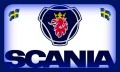 SCANIA989