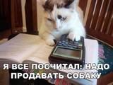 Андрей86