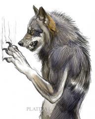 Verwolf