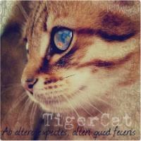 Тигроцапка (х)