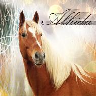 Алкида
