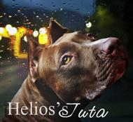 Helios's Juta