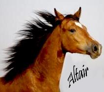 Альтаир