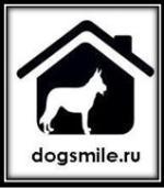 Dogsmile.ru