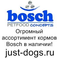 JustDogs