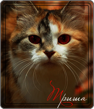 http://myaumury.mybb.ru/img/avatars/0009/d3/0d/69-1253764796.png