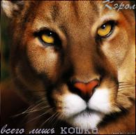 http://newlewking.mybb.ru/img/avatars/000b/2c/33/150-1409660297.png