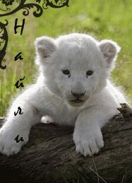http://newlewking.mybb.ru/img/avatars/000b/2c/33/85-1409583079.png