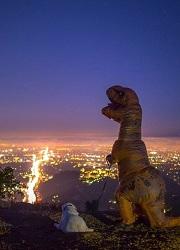 Hungry Dinosaur