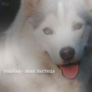 http://dorogavoblaka.mybb.ru/img/avatars/000b/a9/f3/51-1284033639.png