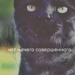 http://warriorscats.1bb.ru/img/avatars/000b/ad/25/91-1334389125.jpg