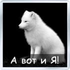 http://gamers.clanbb.ru/img/avatars/000d/f6/47/6-1287761087.jpg
