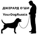YourDogRussia
