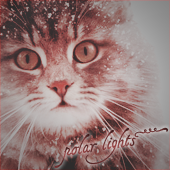 polar lights~