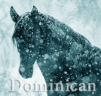 Доминикан
