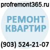ProfRemont365