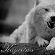 http://wolfblood.rolbb.ru/img/avatars/0012/32/ee/159-1367831003.jpg
