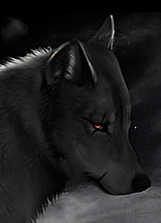 http://wolfblood.rolbb.ru/img/avatars/0012/32/ee/289-1392117688.png