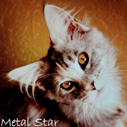 Металлическая Звезда