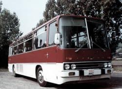 maximus 1981