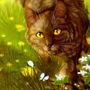 http://cwnewera.0pk.ru/img/avatars/0013/19/61/40-1404333811.png