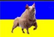 Игорь Алабин