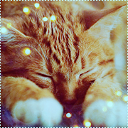 http://cwreboot.mybb.ru/img/avatars/0013/72/04/17-1393746703.png