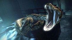 Serpente Sulla Stemma